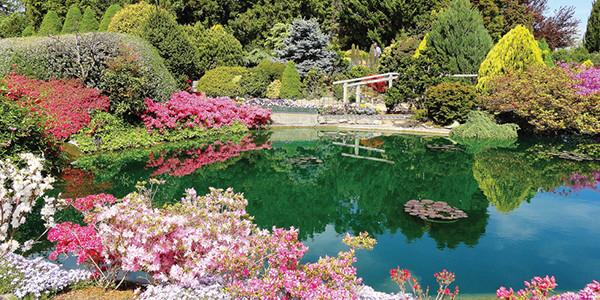 garden festival2